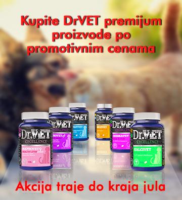 DrVet